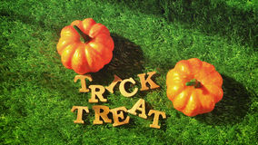 Trick or Treat on grass background, nature concept and wood idea Royalty Free Stock Image
