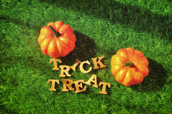 Trick or Treat on grass background, nature concept and wood idea Stock Photography
