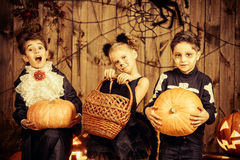 Trick-or-treating children. Group of joyful children in halloween costumes posing together in a wooden barn with pumpkins. Halloween concept stock photo