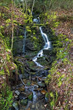 Trickle of water over moss and rocks at Melincourt waterfalls Stock Photography