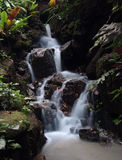 Trickle waterfall with silky flow effect, Tropical Spice Garden, Penang, Malaysia Stock Photography
