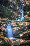 Trickling waterfall Stock Photos