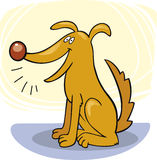 Tricks des Hundes: Barke stock abbildung