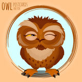 Tricky brown owl, cartoon series Stock Photo