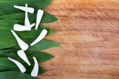 Tricoccum dell'allium dell'aglio selvaggio su fondo di legno Immagini Stock