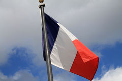 Tricolor flag Royalty Free Stock Image