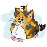 Tricolor kattunge Royaltyfri Fotografi