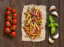 Tricolor pasta with cherry tomatoes, garlic and basil Royalty Free Stock Image
