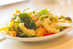 Tricolor Pasta Salad Royalty Free Stock Images