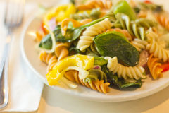 Tricolor Pasta Salad Stock Photo