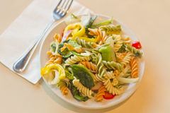 Tricolor Pasta Salad Stock Image