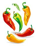 Tricolor vector burning hot chili peppers set. A variety of colorful chili peppers royalty free illustration
