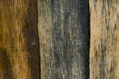 Tricolor Woodgrain Texture Royalty Free Stock Photos
