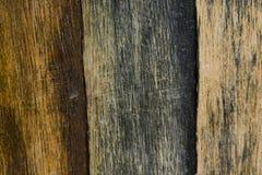 Tricolor Woodgrain Texture Royalty Free Stock Photos