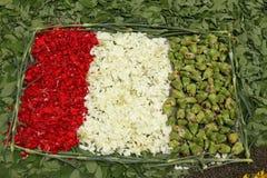 Tricolore Stock Photo