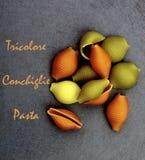 Tricolore Conchiglie pasta Royaltyfri Bild