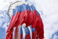 Tricolore russo Immagini Stock