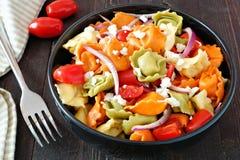 Tricolored tortellini pasta salad on dark wood table Stock Images