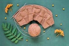 Tricotage automnal avec des feuilles et des ashberries Photographie stock libre de droits