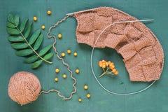 Tricotage automnal avec des feuilles et des ashberries Photo libre de droits