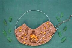Tricotage automnal avec des feuilles et des ashberries Image libre de droits