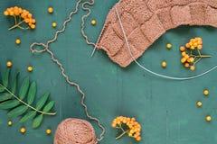 Tricotage automnal avec des feuilles et des ashberries Photographie stock
