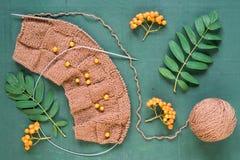 Tricotage automnal avec des feuilles et des ashberries Photo stock