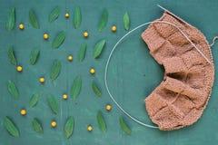 Tricotage automnal avec des feuilles et des ashberries Image stock