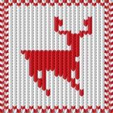 Tricotage avec un cerf commun Photo stock
