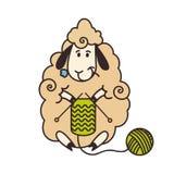 Tricotage bouclé de moutons Photo libre de droits