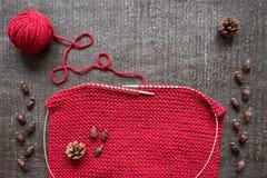 Tricotage, cônes et hanches teintes sur le fond noir Photographie stock libre de droits