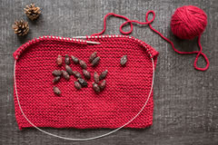 Tricotage, cônes et hanches teintes sur le fond noir Photo stock