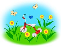 Tricycle in the Garden. A red tricycle on a meadow with Stock Photo