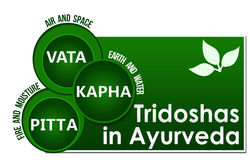 Tridoshas In Ayurveda Three Circles Royalty Free Stock Image