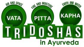 Tridoshas In Ayurveda Three Circles Stripes Royalty Free Stock Photos