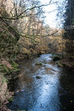 Trieb-Fluss nahe Plauen-Stadt in Vogtland Lizenzfreies Stockfoto