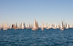 Trieste, Barcolana 2009 - The Stock Images