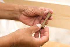 2017.07.07, Trieste, Italy. Archaeologist shows a human bones Stock Photography
