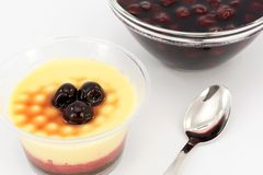 Trifle dessert Royalty Free Stock Photos