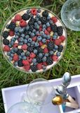 Trifle Royalty Free Stock Images
