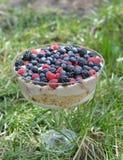 Trifle Stock Photo
