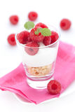Trifle with raspberries Royalty Free Stock Photography