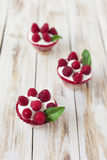 Trifle sweet dessert with raspberries. Royalty Free Stock Photo