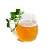 Trifoglio e birra Immagini Stock