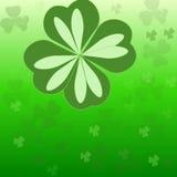 Trifoglio irlandese Immagini Stock