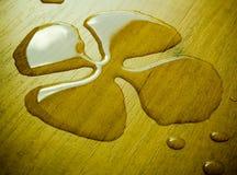 Trifoglio liquido fotografie stock libere da diritti