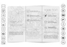 Trifold насмешка брошюры вверх по дизайну вектора Стоковые Фото