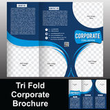 Trifold Collectieve Brochure Stock Afbeelding