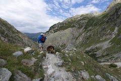 Trift River Valley, Suíça Imagens de Stock