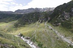 Trift rzeczna dolina, Szwajcaria Fotografia Royalty Free